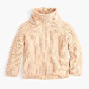 J Crew Point Sur Turtleneck Sweater Sz Large